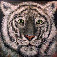 White Tiger Art Prints & Posters by Rich Summers Art