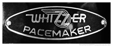 Whizzer Pacemaker BW
