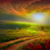 Country Sunset Art Prints & Posters by Igor Zenin