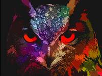 owl Bird Art