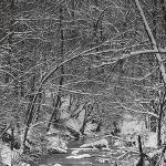 """A Snowy Day at the Creek"" by joegemignani"