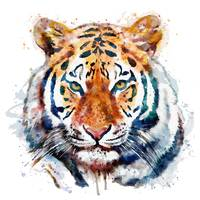 Tiger Head Watercolor