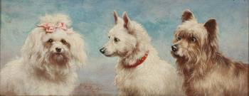 Carl Reichert (Austrian, 1836-1918) white dogs