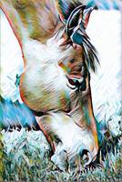 Horse Animal Art Print 5 - Rogue Art Prints