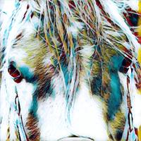 Horse Animal Art Print 3 - Rogue Art Prints