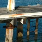 """Aqua Marine"" by DavidBleakley"