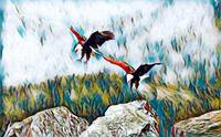 Eagles In Flight Rogue Art