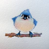 BABY BLUEBIRD 5X5 by Marcia Baldwin