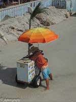 The Ice Cream Vendor