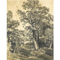 John Constable, R.A. 1776-1837 A WOODED LANDSCAPE,