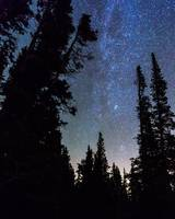 Rocky Mountain Forest Night