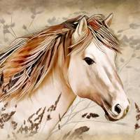 A Horse of Course Art Prints & Posters by Nina Bradica