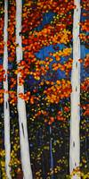 Autumn Birch Tree Series