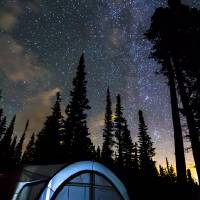 Camping Star Light Star Bright Art Prints & Posters by James