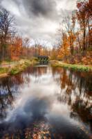 Autumn Pond by Jim Crotty