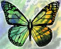 Watercolor Butterfly In Green And Yellow