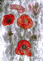 12c Floral Poppies Expressionism Digital Painting