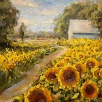 """Kentucky Barn Amongst the Sunflowers"" by lindseytull"