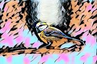 Bird Pop Art Portrait