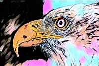 Eagle Comic Pop Art