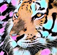 Tiger Pop Art Comic