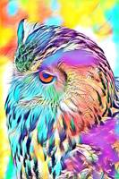 Multi Colored Owl