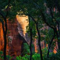 Zion1aORG Art Prints & Posters by James Neeley