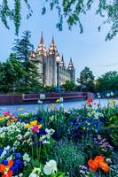 Salt Lake City Temple, Blue hour