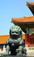 Lions Forbidden City