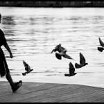 """Imagekind"" by Peniche"