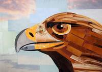 The Serious Grin of the Eagle