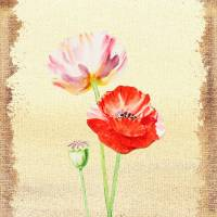 Poppy Flowers Botanical Decor Art Prints & Posters by Irina Sztukowski