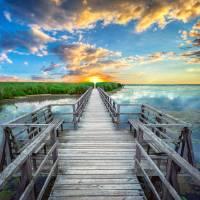 Wetland Marsh Sunrise Treasure Coast Florida A1 Art Prints & Posters by Ricardos Creations