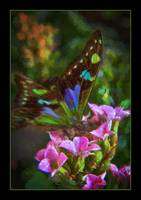 img_5235PS butterfly impasto painting green border