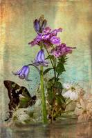 img_5558PS butterfly flower arrangement painting