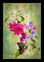 img_5567PS butterfly flower arrangement painting