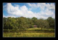 img_8254PS Old Barn Rural Georgia Painting