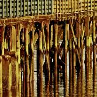Under The Boardwalk Wall Art Print Art Prints & Posters by Carol F Austin
