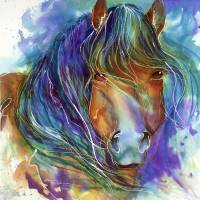 BUCKY the MUSTANG in WATERCOLOR Art Prints & Posters by Marcia Baldwin