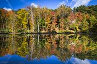 Autumn Reflection by Cody York_N2Q9121-