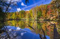 Autumn Reflection by Cody York-9129