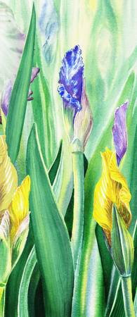 Iris Flowers In The Garden Watercolor Painting