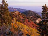 Saddle Mountain Autumn