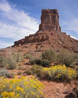 Valley of the Gods #1