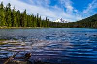 Frog Lake and Mt. Hood