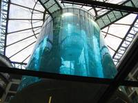Suspended Aquarium In Berlin - Deutschland