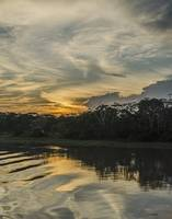 Amazon Sunset