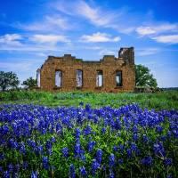Texas Blues - Pontotoc Art Prints & Posters by Katya Horner