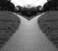 Split Symmetrical Pathway Abstract Photograph