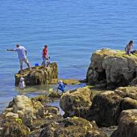 Fishing from the Rocks, Seaview Art Prints & Posters by Rod Johnson